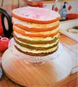 Rainbow Cake 3 (2)